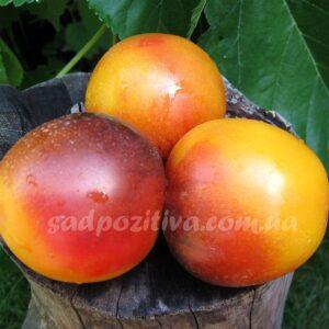 Радужный персик